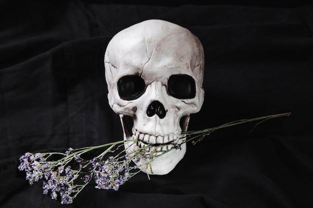 Schedel met bloemen in de mond Gratis Foto