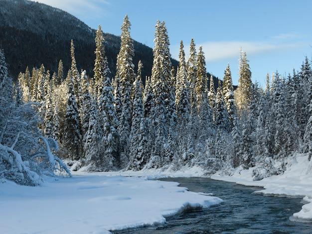 Schilderachtig uitzicht op bevroren meer, regionaal district fraser-fort george, highway 16, yellowhead highway, Premium Foto