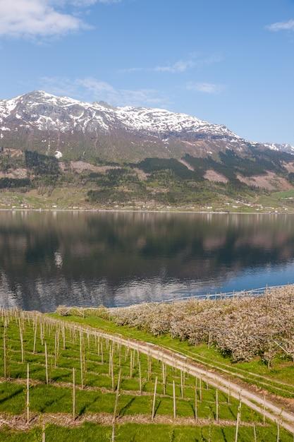 Schilderachtige landschappen van de noorse fjorden. Gratis Foto