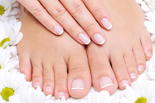 Schoonheidsbehandeling van een vrouwelijke voeten met kamillebloem eromheen Gratis Foto