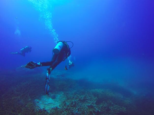 Scuba-duikers zwemmen over het levende koraalrif vol met vissen en zee-anemonen. Premium Foto