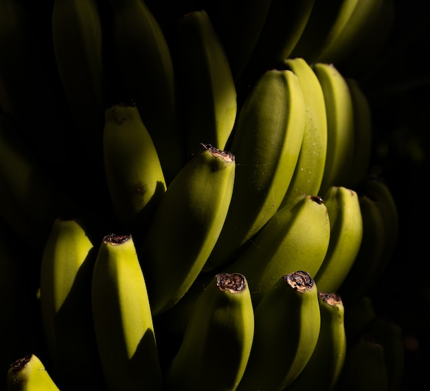 Selectieve aandacht shot van een tros bananen Gratis Foto
