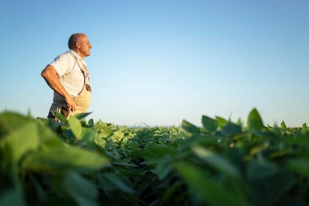 Senior hardwerkende boer agronoom op sojaboon veld op zoek in de verte Gratis Foto