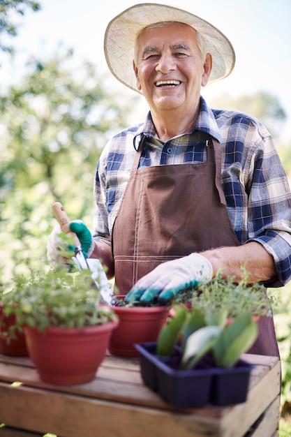 Senior man aan het werk in het veld met planten Gratis Foto