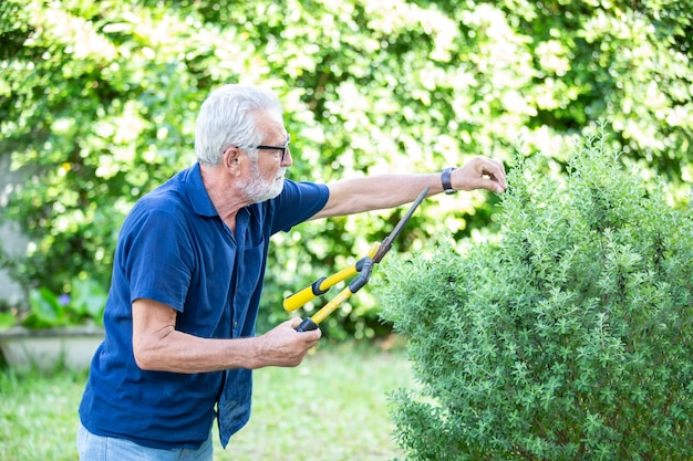 Senior mensen doen tuinieren binnenshuis Premium Foto