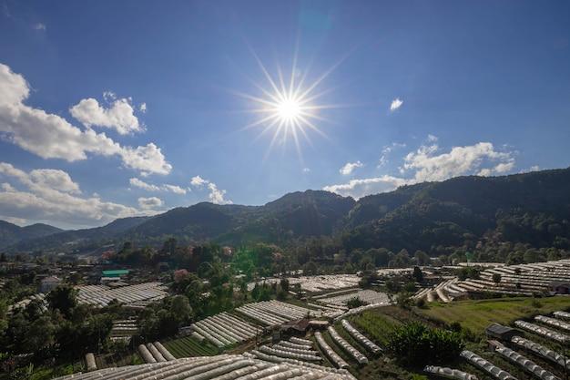Serreinstallatie en zon, doi inthanon-berg, chiang mai-provincie, landschap thailand. Gratis Foto