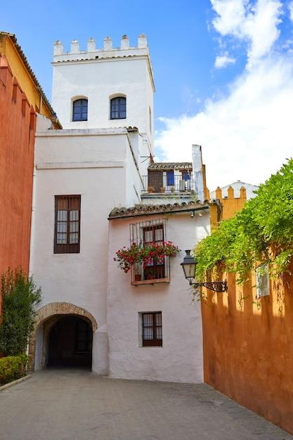 Sevilla juderia barrio andalusia sevilla spanje Premium Foto