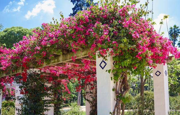 Sevilla maria luisa park gardens spanje Premium Foto