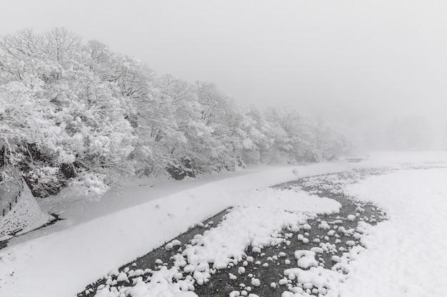 Shirakawa gaat sneeuwseizoen japan Premium Foto