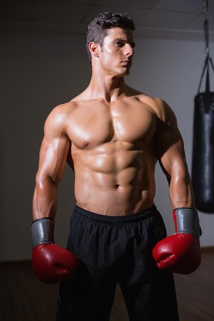 Shirtless spierbokser in gezondheidsclub Premium Foto