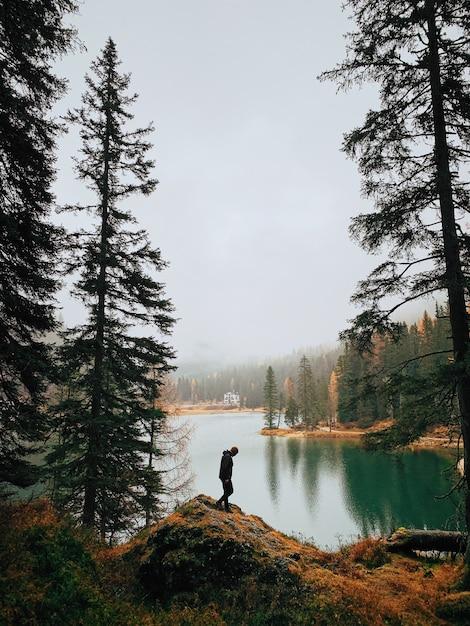 Silhouet van een man lopen in het bos in de buurt van een meer tijdens mistig weer Gratis Foto
