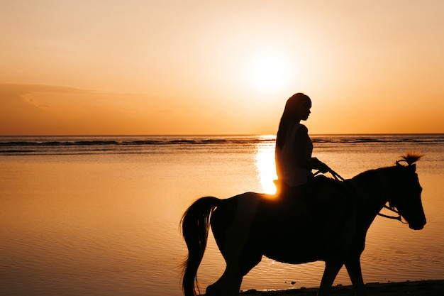 Silhouet van jonge vrouw rijden op een paard op het strand tijdens gouden kleurrijke zonsondergang in de buurt van de zee Gratis Foto