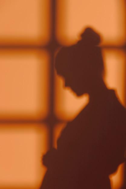 Silhouet van jonge vrouw thuis met vensterschaduwen Gratis Foto