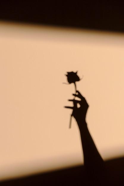 Silhouetten van vrouw met een bloem Gratis Foto