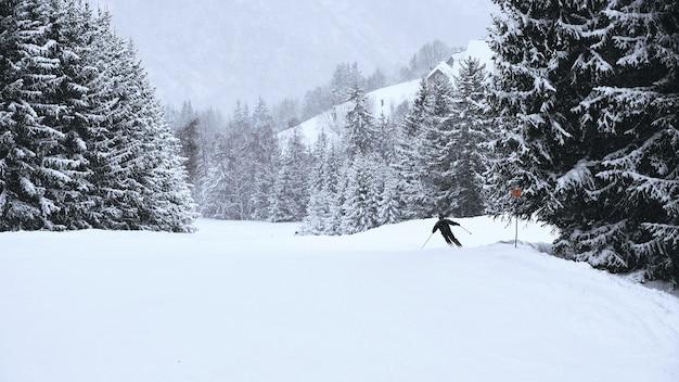Skiër die door de hellingen van het met bomen omzoomde skigebied alpe d huez in de franse alpen gaat Gratis Foto