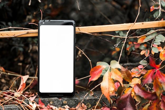 Slimme telefoon met lege witte scherm in de buurt van de herfst bladeren Gratis Foto