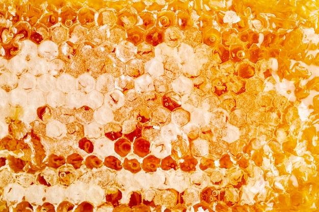 Sluit omhoog gouden honingraat Premium Foto