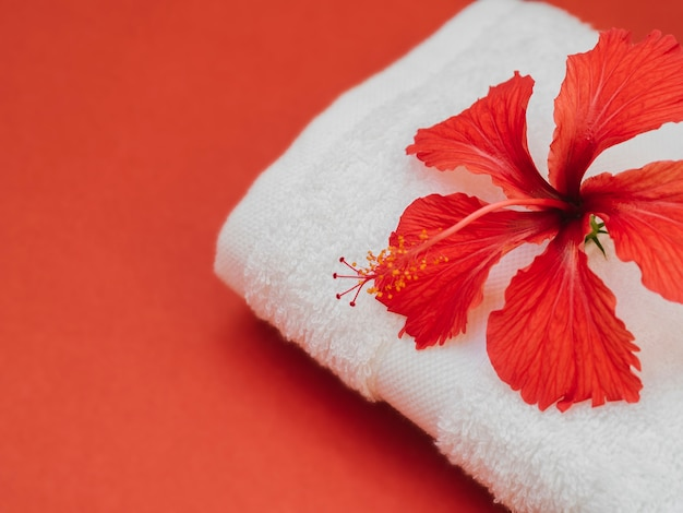 Sluit omhoog handdoek met bloem op bovenkant Gratis Foto