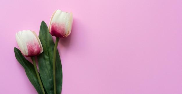 Sluit omhoog hoogste mening van tulpenbloem op roze Premium Foto