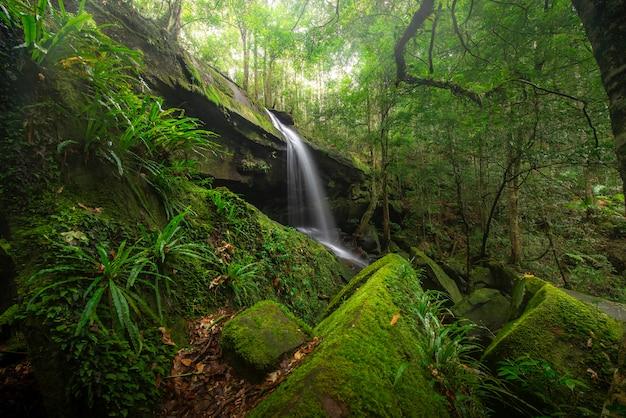 Sluit omhoog meningswaterval in diep bos bij nationaal park, de scène van de watervalrivier. Premium Foto