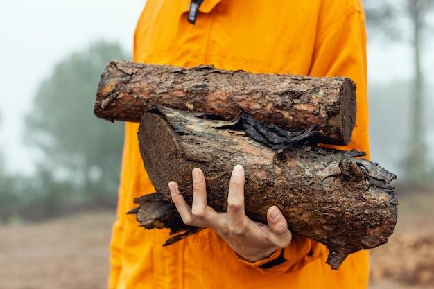 Sluit omhoog van een kaukasisch brandhout van de mensenholding opent een mistig bos het programma dat oranje regenjas draagt tijdens een regenachtige dag Premium Foto
