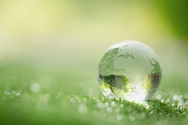 Sluit omhoog van kristalbol die op gras in een bos rusten Gratis Foto