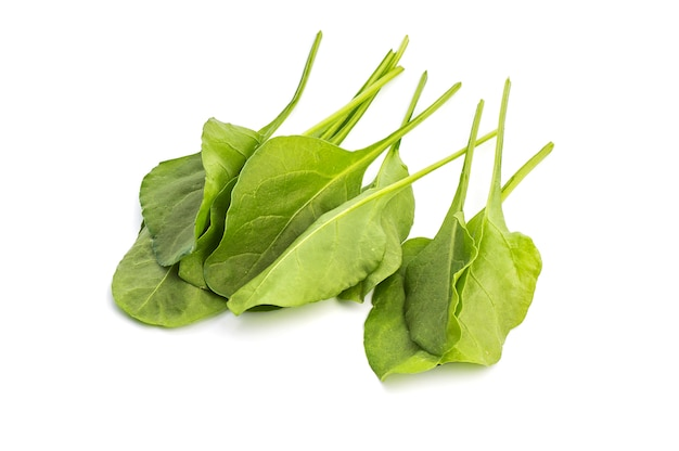 Sluit omhoog van verse groene geïsoleerde spinazie Premium Foto