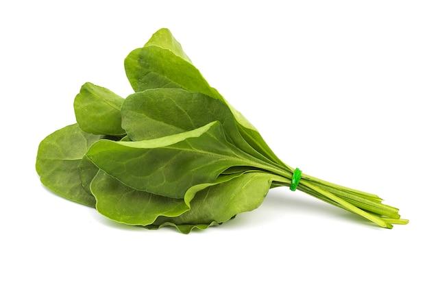 Sluit omhoog van verse groene spinazie die op witte oppervlakte wordt geïsoleerd Premium Foto