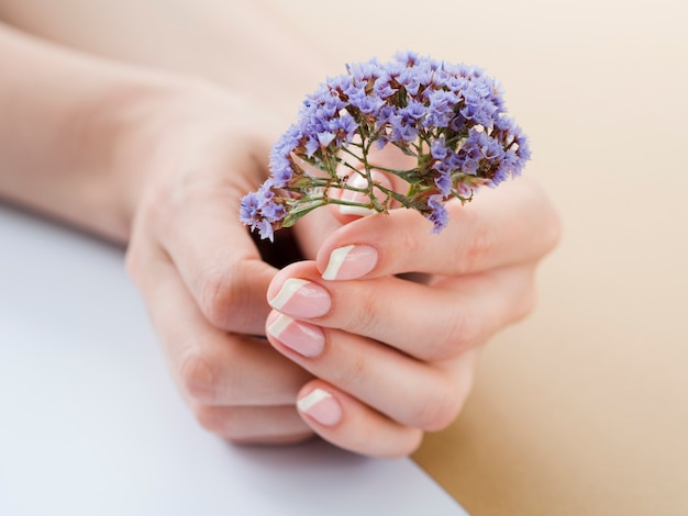 Sluit omhoog vrouwenhanden houdend purpere bloemen Premium Foto