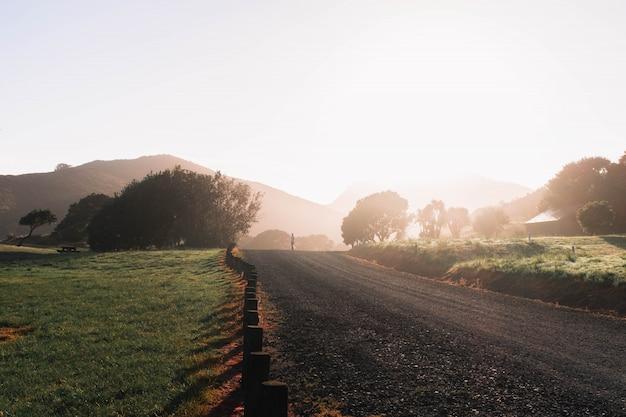 Smalle landelijke onverharde weg in het midden van een groen veld met bomen en heuvels Gratis Foto