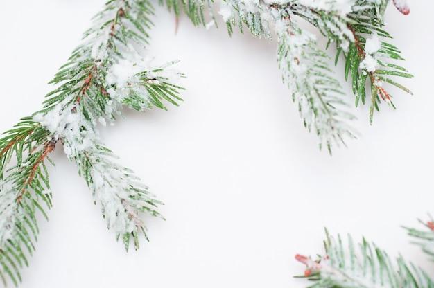 Sneeuw bedekte dennentakken en kerstversiering met copyspace Premium Foto