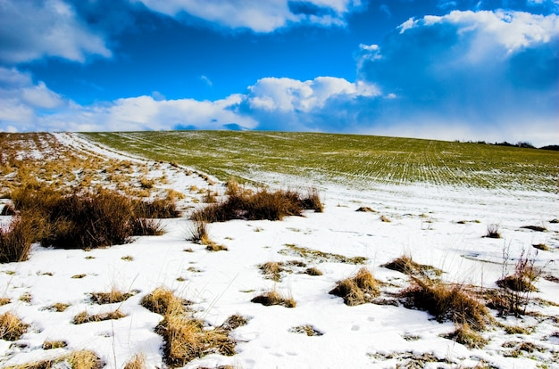 Sneeuw en greenfield Gratis Foto