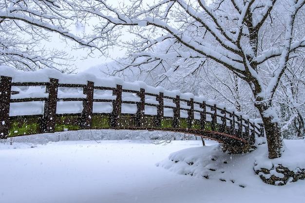 Sneeuw vallen in het park en een wandelbrug in de winter, winterlandschap Gratis Foto