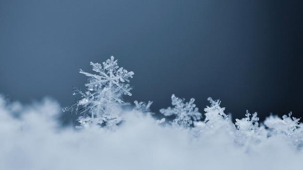 Sneeuwvlok. macrofoto van echt sneeuwkristal. mooie de winter seizoengebonden achtergrond als achtergrond en wea Gratis Foto