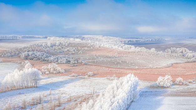 Sneeuwweide met bosstroken en lege agrarische velden. winter landschap. Premium Foto