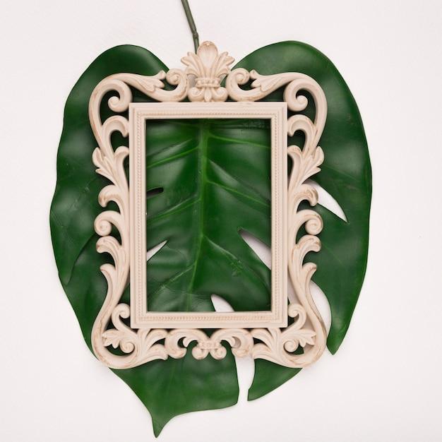 Snijdend rechthoekig houten frame op groen enig monestrablad tegen achtergrond Gratis Foto