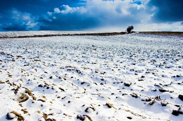 Snowfield Gratis Foto