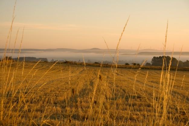 Spaans platteland Premium Foto