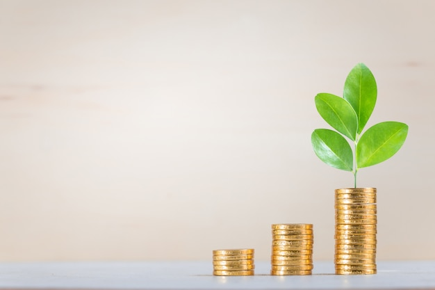 Sparen, bedrijven groeien op Premium Foto