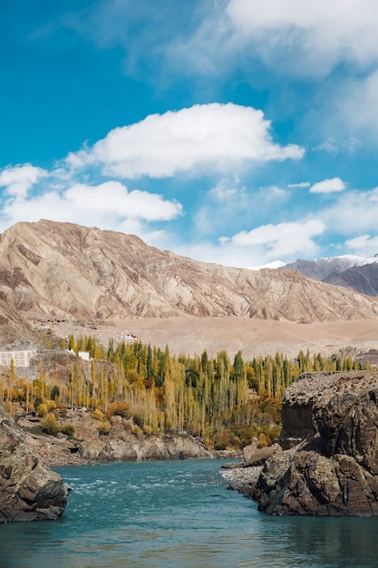 Speldboom en rivier en blauwe hemel met berg in de herfst in leh ladakh, india Gratis Foto