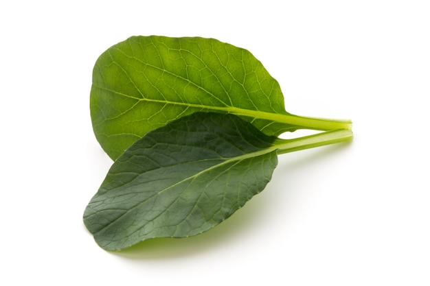 Spinazie bladeren close-up geïsoleerd op wit. Premium Foto