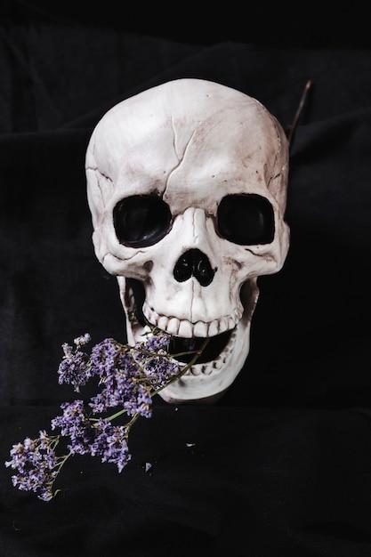Spooky cranium met droge bloemen Gratis Foto