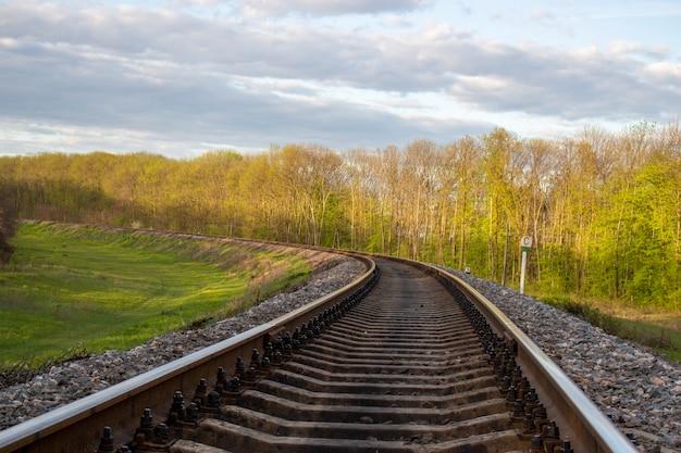 Spoorwegen in de stad, natuur en bomen aan weerszijden. Premium Foto