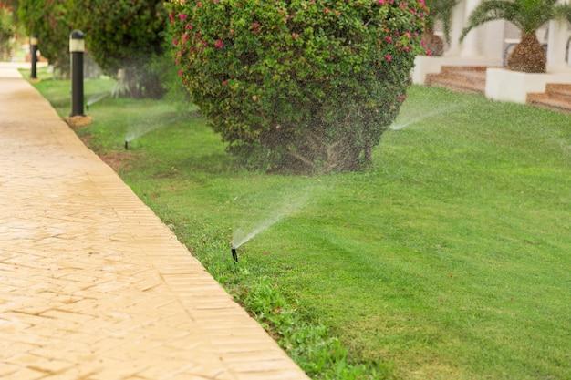 Sprinkler in tuin die het gazon water geeft. automatisch gazon gazons concept Premium Foto