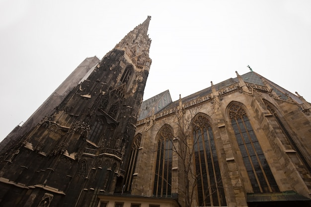 St. stephen's cathedral in wenen Gratis Foto