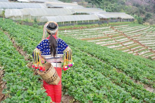 Stammeisjes verzamelen aardbeien Gratis Foto