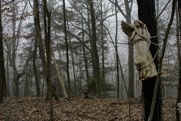 Standbeeld van een engel midden in het bos Gratis Foto