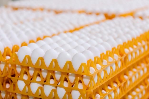 Stapel eieren op lade in de winkel Premium Foto
