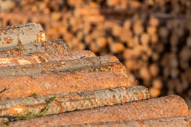 Stapels dennen- en lariksblokken voorbereid voor export. het concept van kap en vernietiging van wereldbosreservaten. Premium Foto
