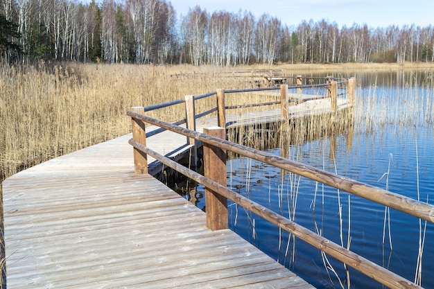 Steengroeve in olaine, letland Premium Foto